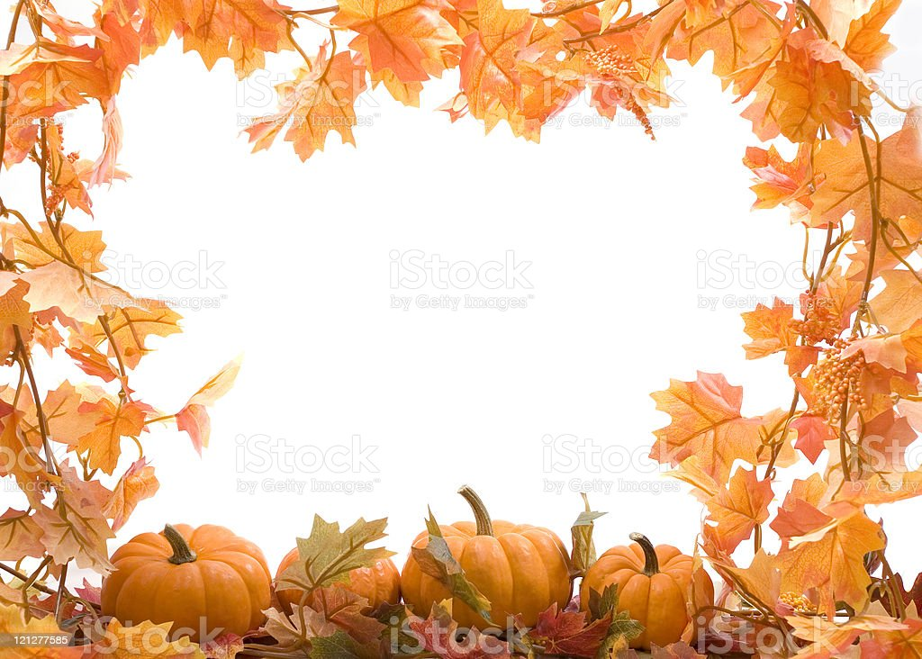 Pumpkins with fall leaves stock photo