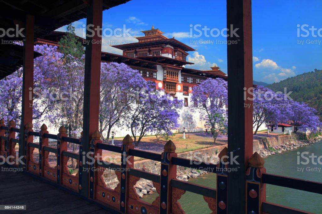 Punakha Dzong, Bhutan stock photo