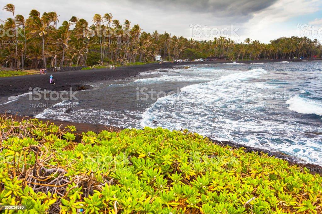 punalu u black sands beach hawaii big island stock photo