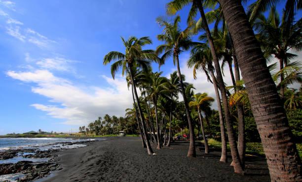 Punalu'u Beach view Wide shot of Punalu'u black sand beach, big Island Hawaii black sand stock pictures, royalty-free photos & images