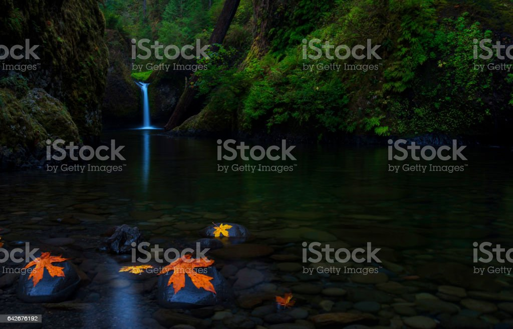 Punch Bowl Falls with Reflection stock photo