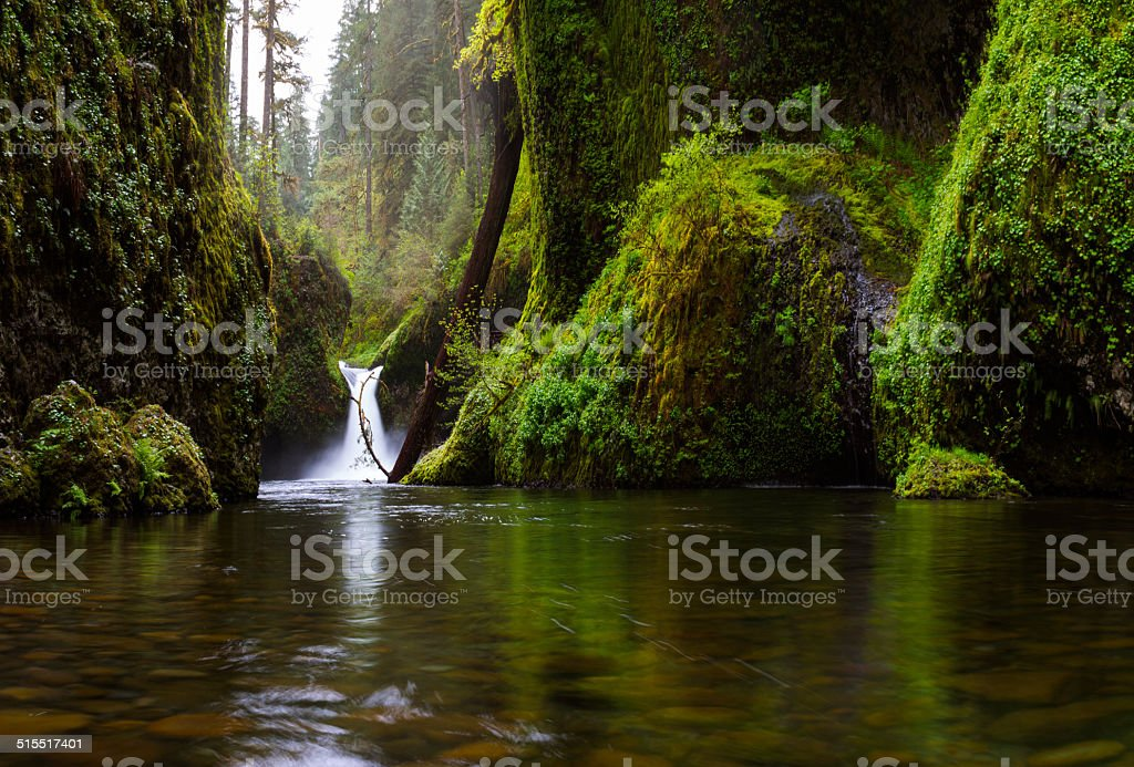 Punchbowl Falls, Columbia Gorge stock photo