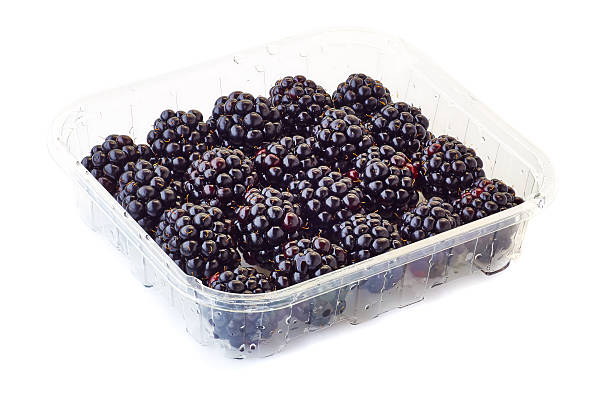 punnet of blackberries on white A punnet of blackberries isolated on white backgrounf fruit carton stock pictures, royalty-free photos & images