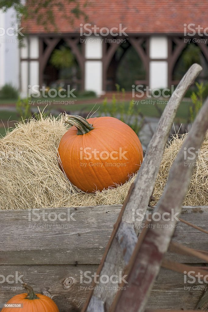 punpkins and hay on a farm royalty-free stock photo