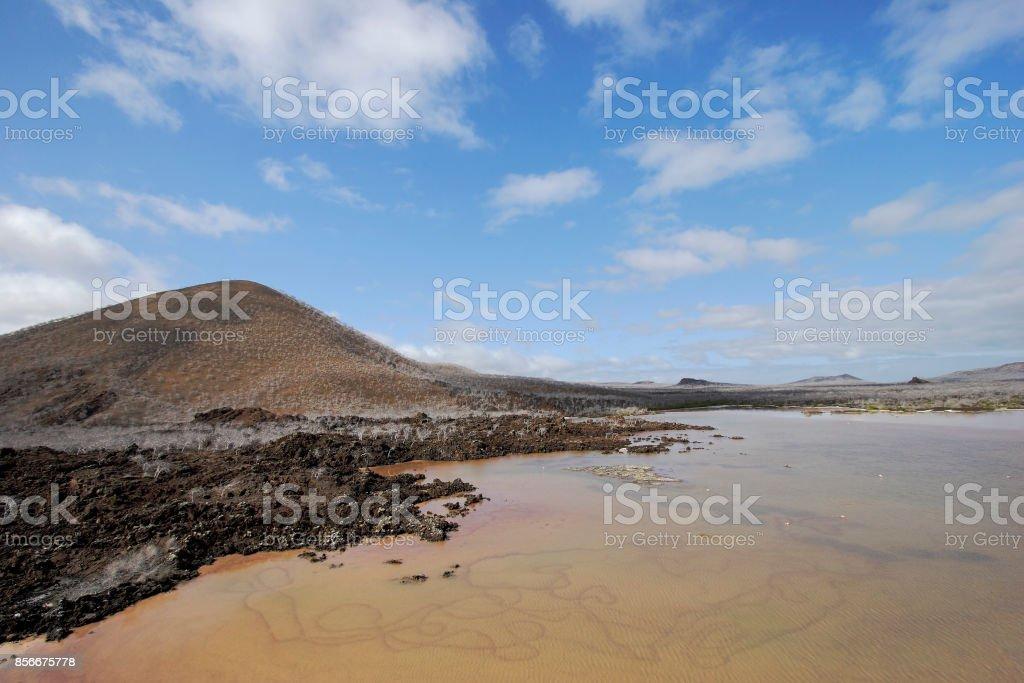 Punta Cormorant landscape, Floreana, Galapagos Islands stock photo