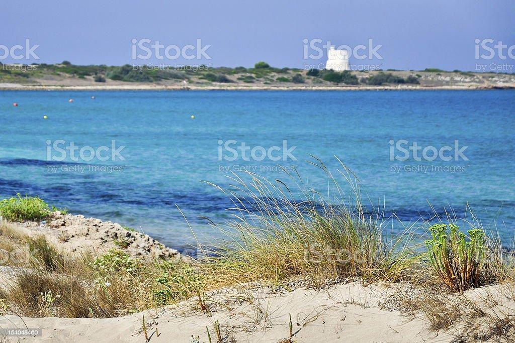 Punta della Suina beach in Salento royalty-free stock photo