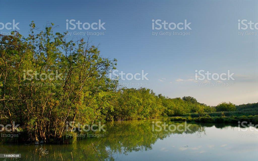 Punte Alberete (Po Delta Park - Italy) stock photo