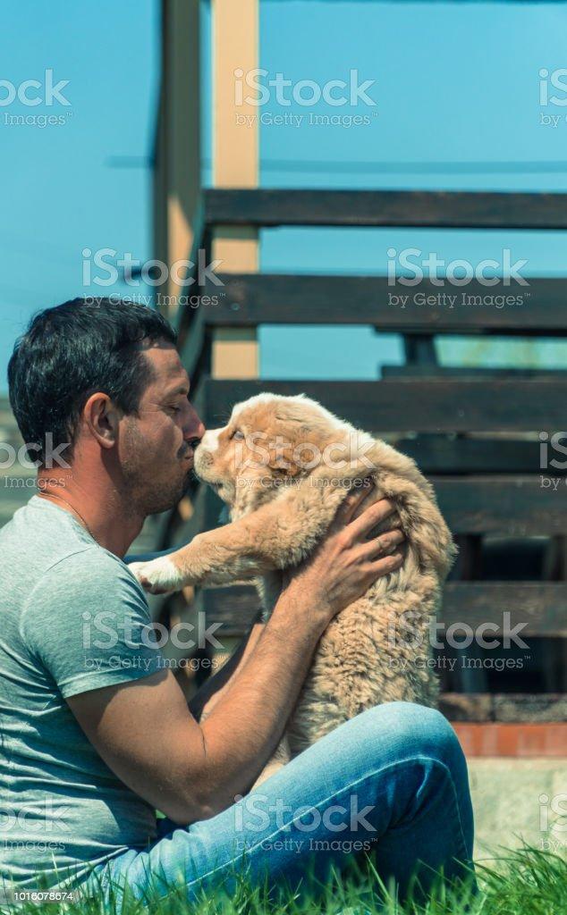Istock Central Asian Shepherd Dog 1057195708 Istock Central Asian