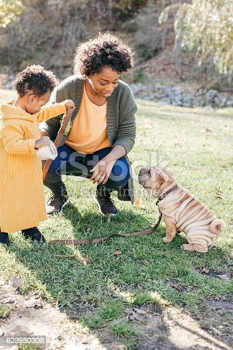 istock Puppy and toddlers training 623980308