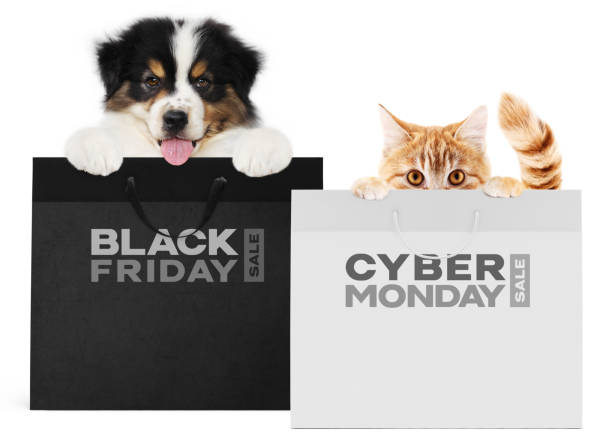 щенок собака и кошка домашних животных вместе показаны черные и серебряные сумки с черной пятницы и кибер понедельник текст изолированы на - black friday стоковые фото и изображения
