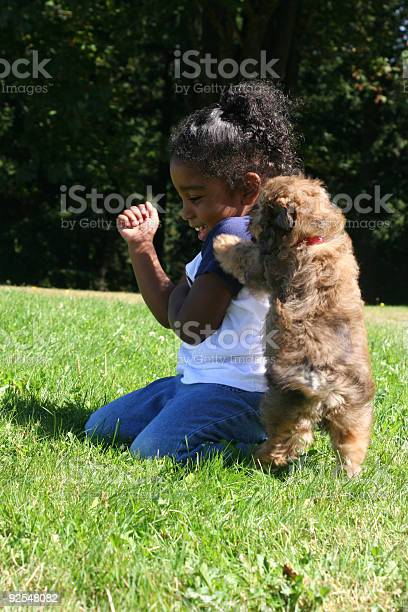 Puppy Kisses Stock Photo - Download Image Now