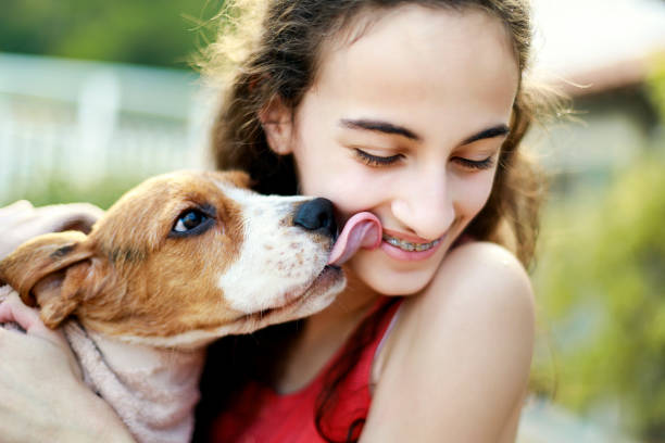 Puppy kissing teenage girl Puppy kissing teenage girl 14 15 years stock pictures, royalty-free photos & images