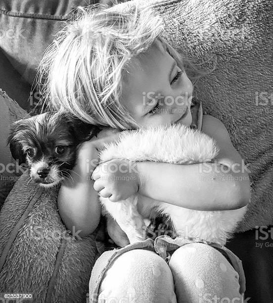 Puppy love picture id623537900?b=1&k=6&m=623537900&s=612x612&h=rlze0bn hecgvjudxonhtroiyvpl9yo rq8hwsrrfak=