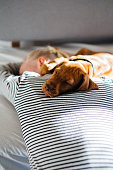 istock Puppy resting close to his owner 1222559047