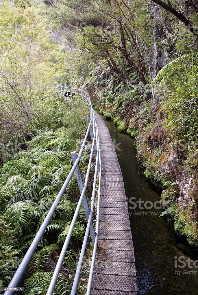 Pupu Hydro Walkway, Golden Bay, New Zealand royalty-free stock photo