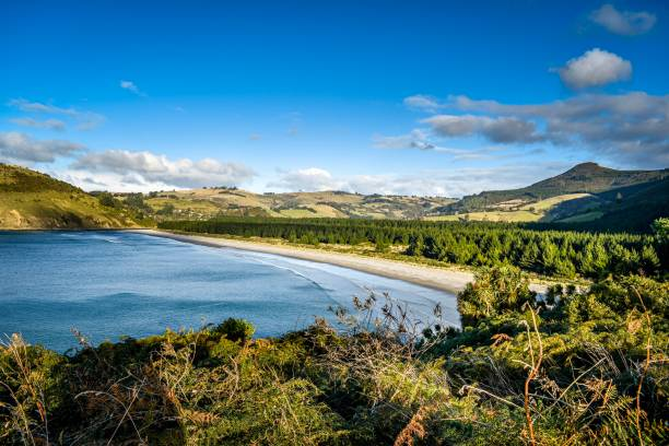 Purakaunui Bay, Otago, South Island New Zealand stock photo