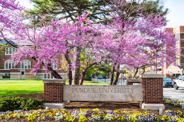 purdue university - purdue university stock-fotos und bilder