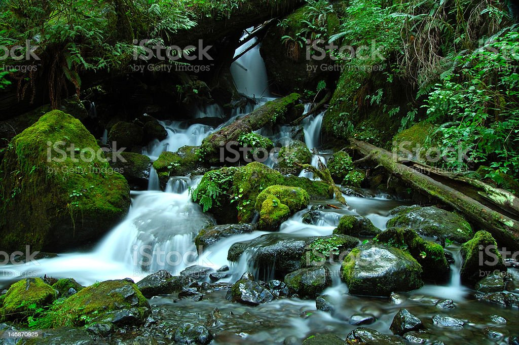 Pure flowing silk royalty-free stock photo