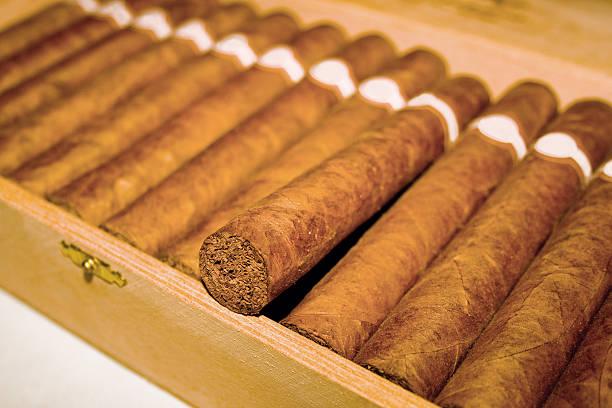 Сигареты черута купить куплю сигареты оптом набережных челнах