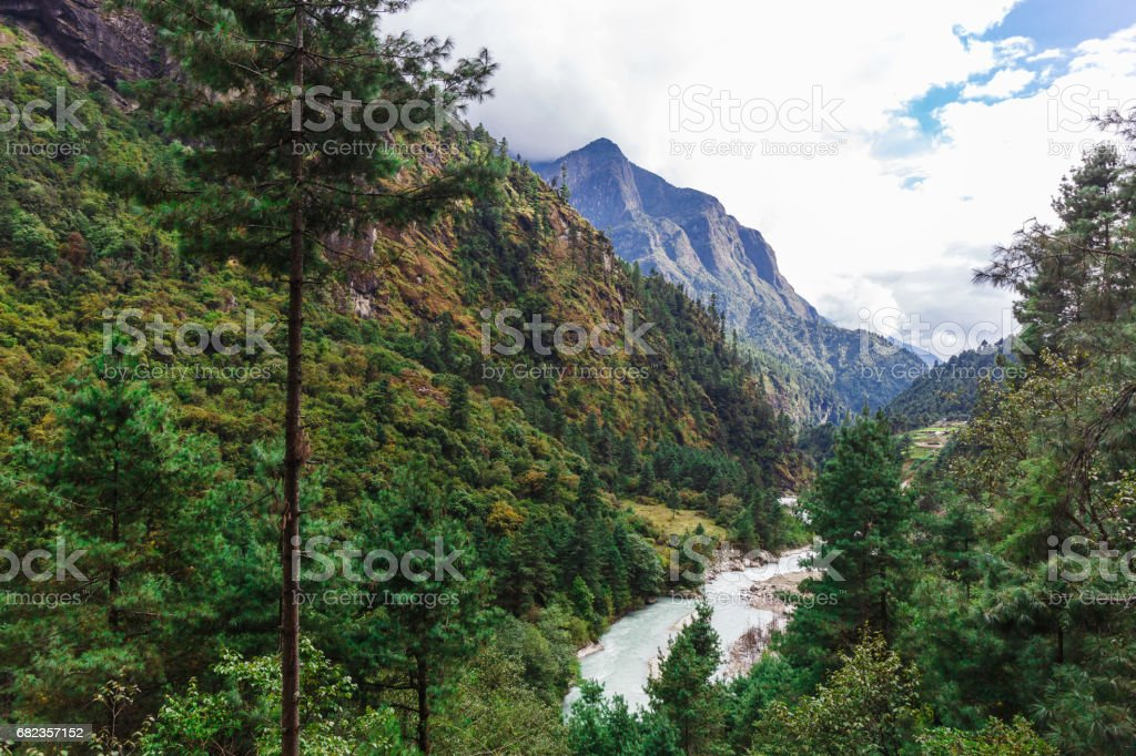 Pure mountain river foto stock royalty-free
