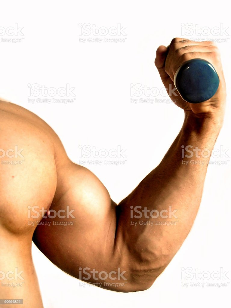 Pure Muscle royalty-free stock photo