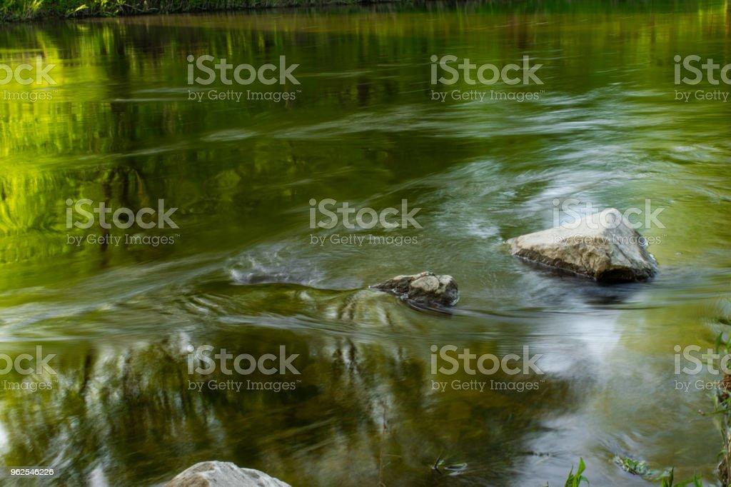 Pure natureza - Foto de stock de EUA royalty-free