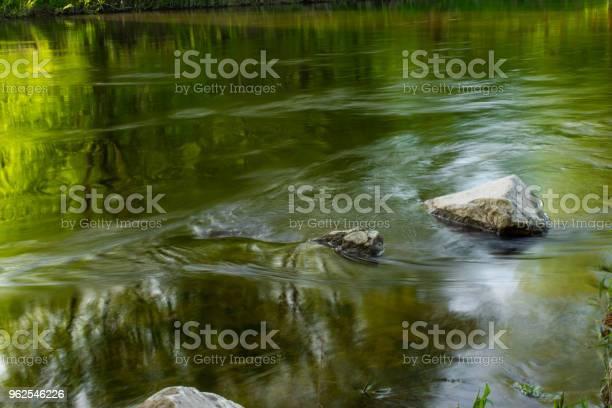 Foto de Pure Natureza e mais fotos de stock de EUA