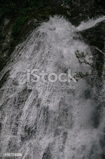 pure water source, waterfall in the middle of the jungle, amazon.