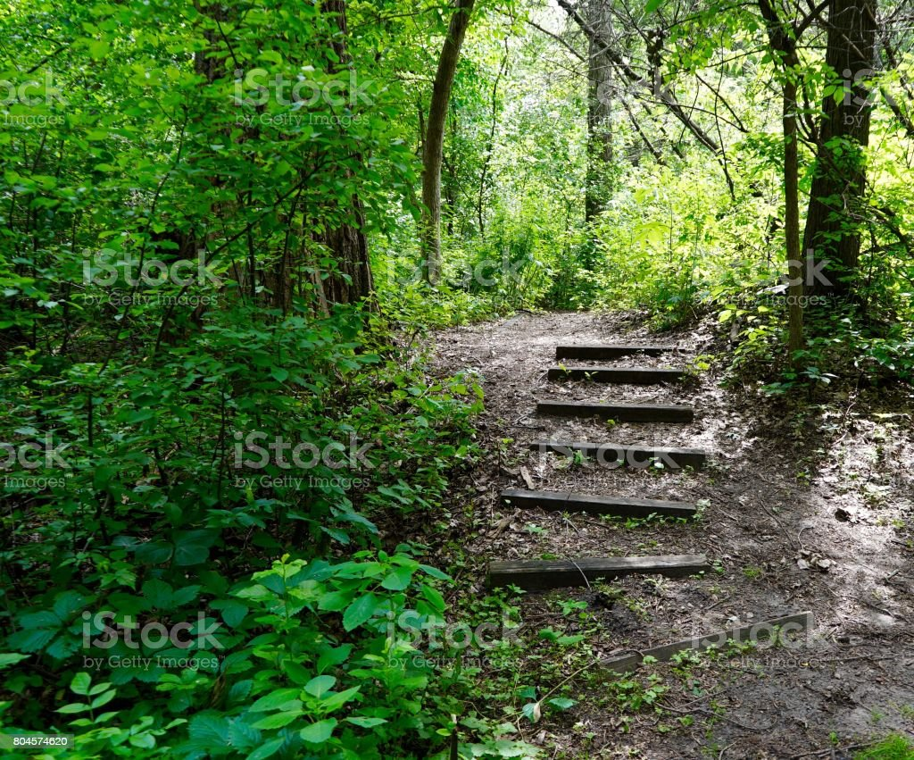 Purgatory Trail at Staring Lake Park stock photo