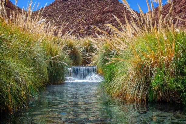 Puritama heißen Quellen in der Nähe von San Pedro d' Atacama, Chile – Foto
