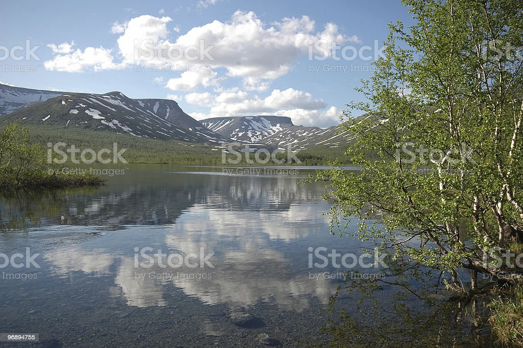 Purity of the nature royalty-free stock photo