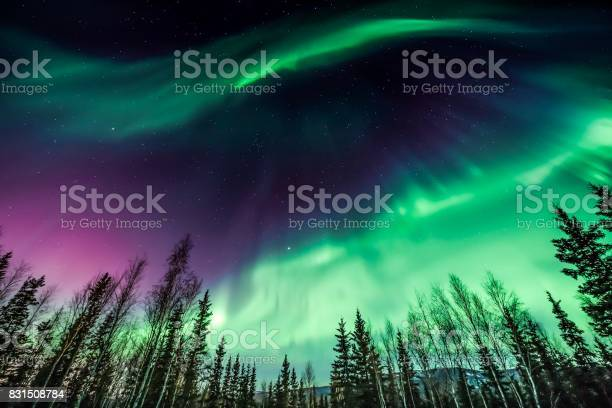 Photo of Purple and green northern Lights