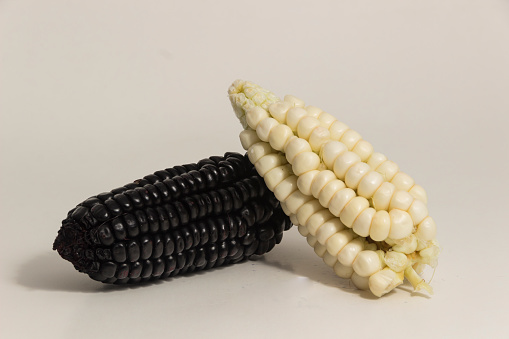 Purple And White Corn Still Life Stock Photo - Download Image Now