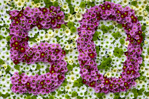 purple and white flowers in a shape of number 50