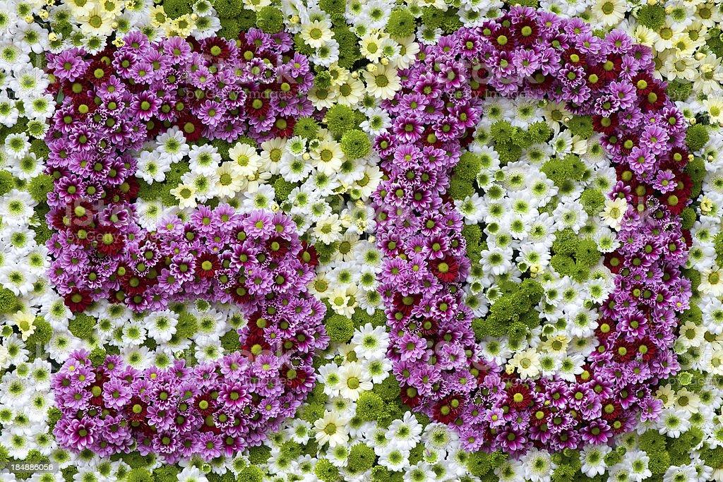 Lila und weiße Blumen in Form von Nummer 50 – Foto