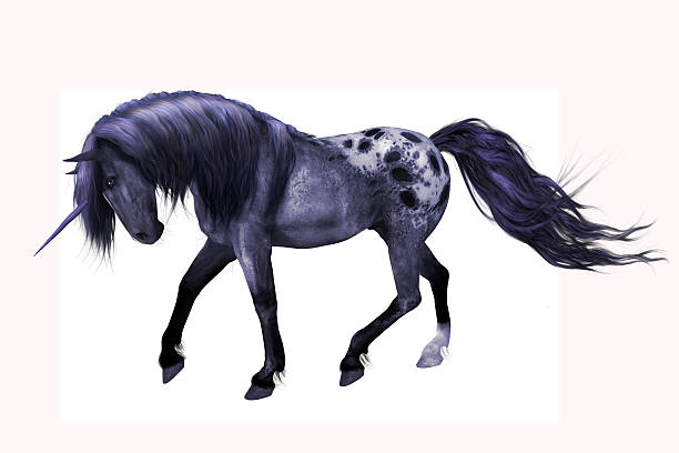 Purple Appaloosa Unicorn A unicorn with mainly blue and purple tones with appaloosa coat.  He is isolated on a white background. appaloosa stock pictures, royalty-free photos & images