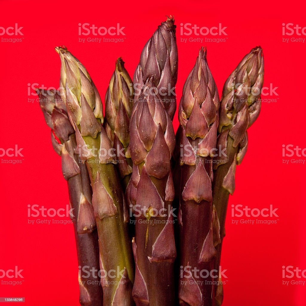 Purple asparagus with a red background. royalty-free stock photo
