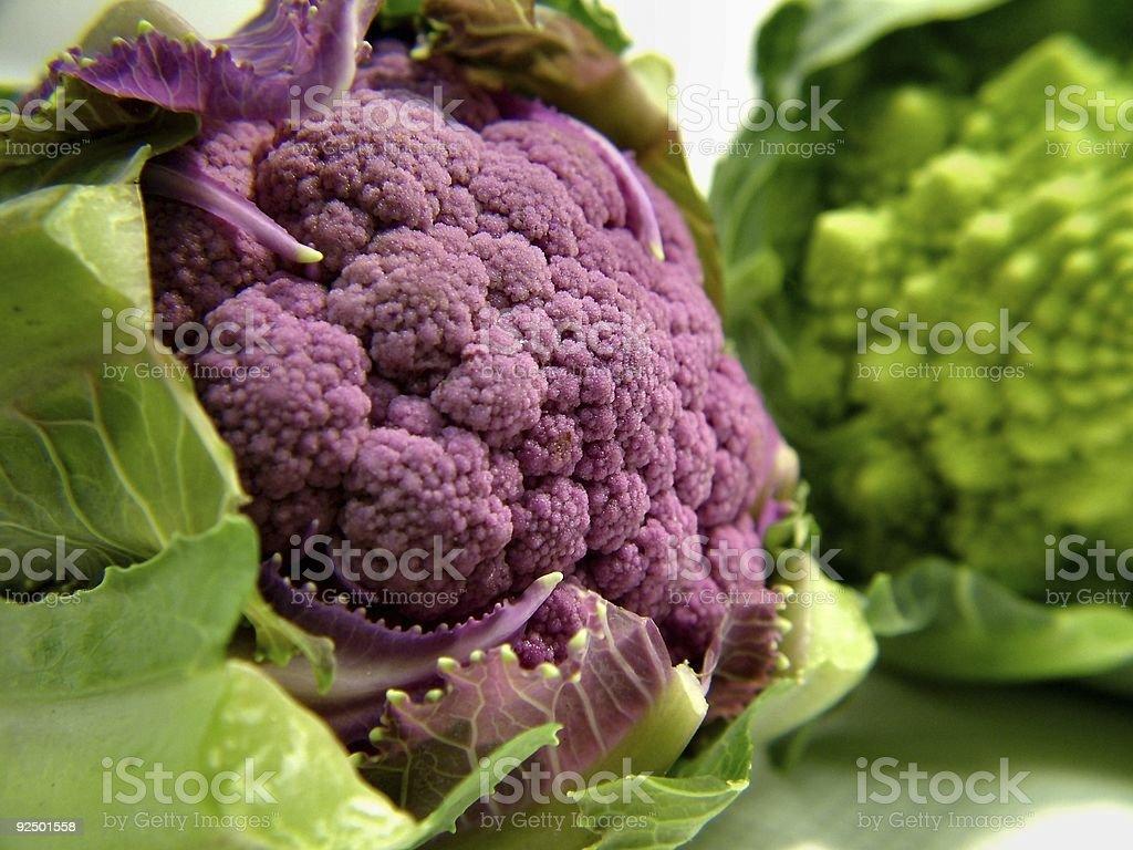 Purple Baby Cauliflower royalty-free stock photo