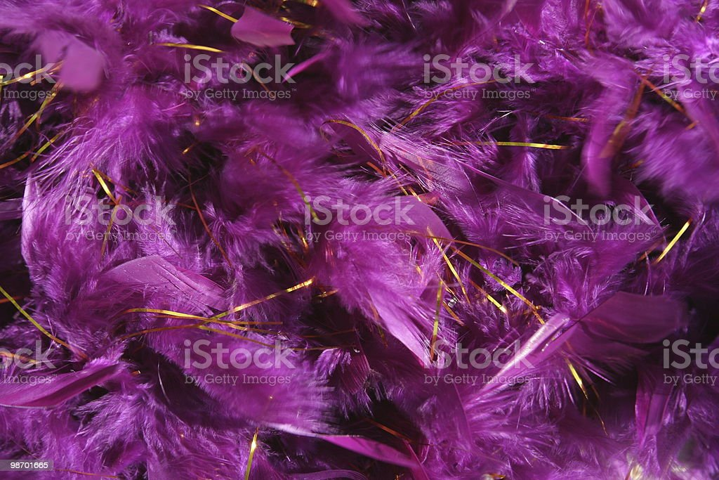 Purple boa background royalty-free stock photo