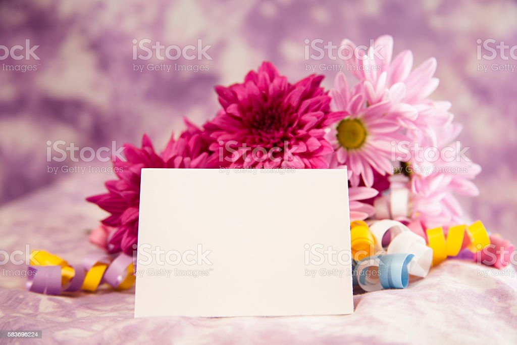 Purple Daisy Flower Bouquet With White Blank Notecard Stock Photo ...