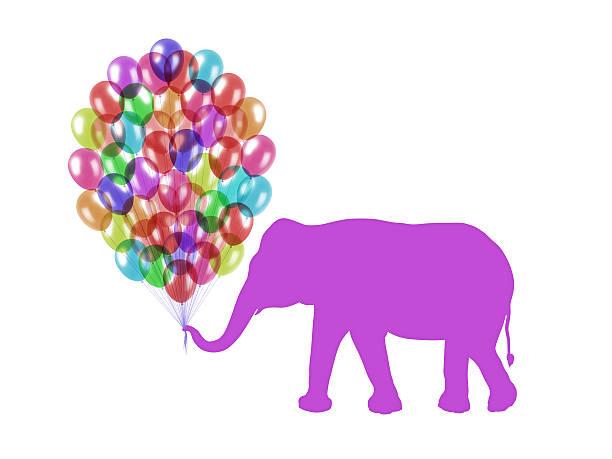 purple elephant halten bunte luftballons mit seinem trunk - elefanten umriss stock-fotos und bilder