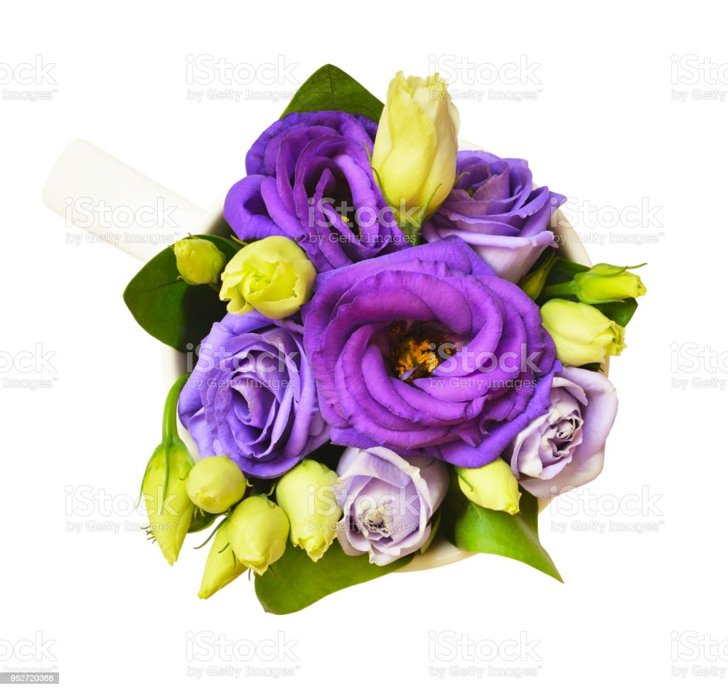 purple eustoma flowers in a cup stock photo more pictures of