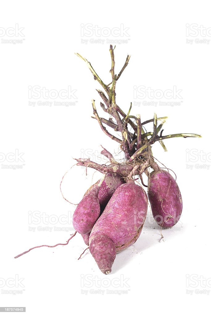 Purple Fleshed Sweet Potato royalty-free stock photo