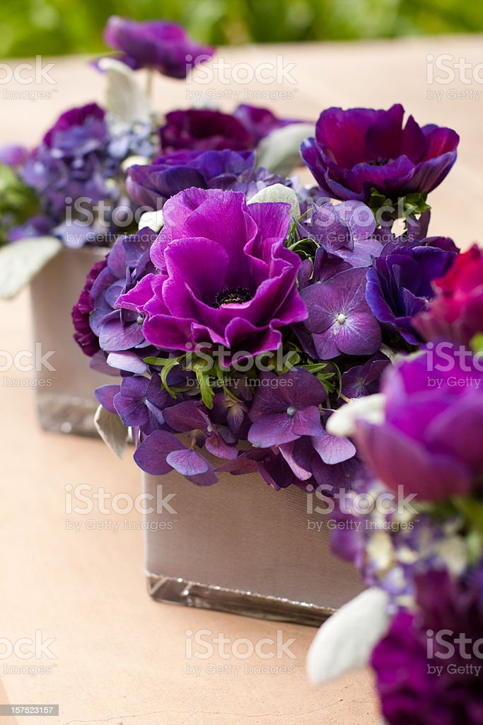 Purple Flower Decor stock photo
