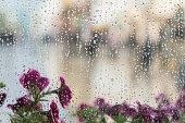 雨で濡れている窓の背後にある紫の花が値下がりしました、ぼやけ通りボケ。春の天気、季節、近代的な都市の概念。抽象的な背景のテキストのための場所