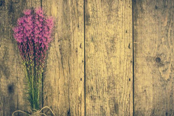 lila blüten auf hölzernen hintergrund, vintage foto kopieren raum - herbst hochzeitseinladungen stock-fotos und bilder