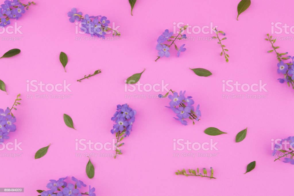 Purple flowers with branch and green leaves pattern stock photo