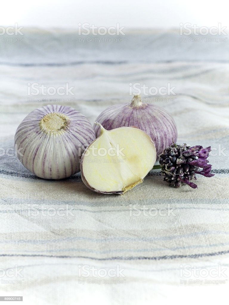 Purple Garlic royalty-free stock photo