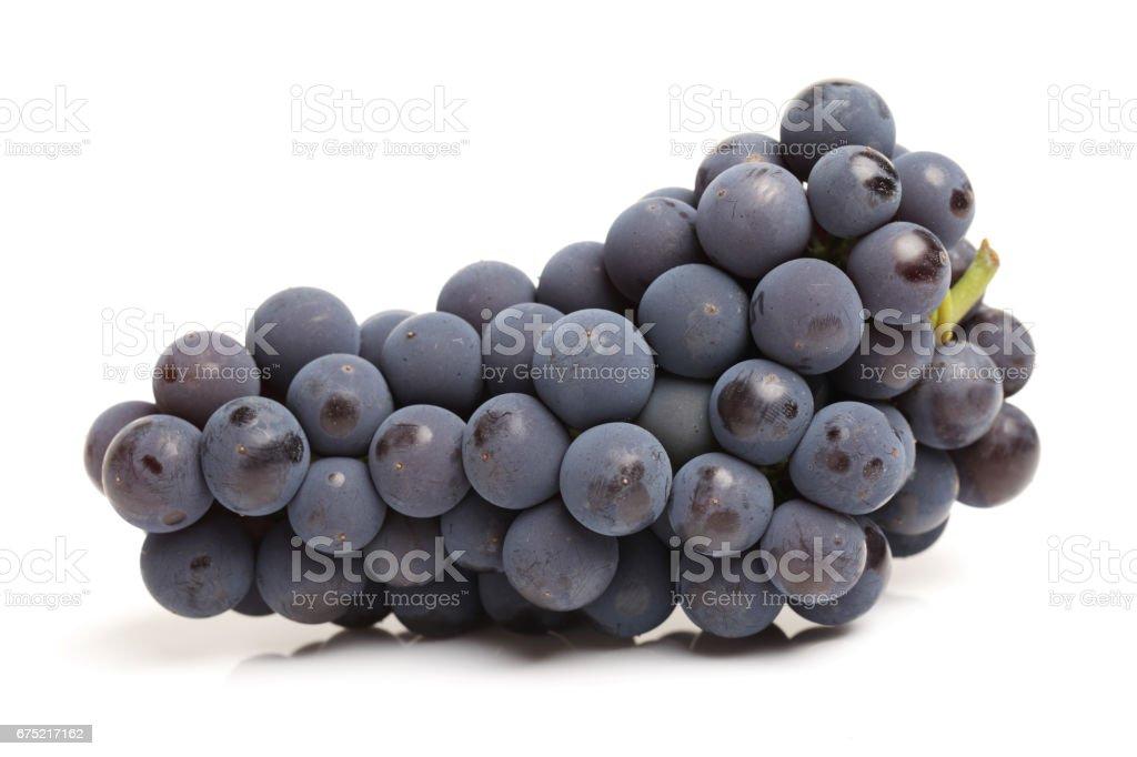 Purple grape    isolated on white background. stock photo