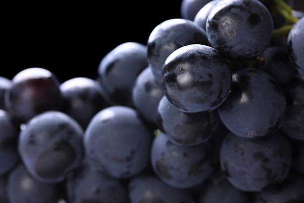 Purple grapes with close-up view stock photo